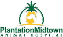 Plantation Midtown Animal Hospital